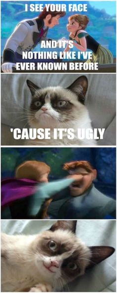 Funny Disney Memes Hilarious Grumpy Cat 17 Ideas For 2019 Grumpy Cat Quotes, Funny Grumpy Cat Memes, Funny Relatable Memes, Funny Cats, Cats Humor, Funny Minion, Funny Animal Quotes, Animal Jokes, Cute Funny Animals