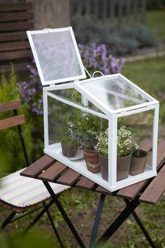 SOCKER drivhus fra IKEA skaber et godt miljø for at frø og planter kan spire og gro. Ikea Terrarium, Dug Up, Water Quality, Outdoor Furniture Sets, Outdoor Decor, Cool Pools, Fresh Water, Swimming Pools, Beautiful Homes