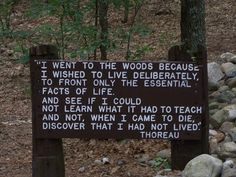 More for me than you. It's one of my favorite quotes by him, and this sign is outside Walden near where his home was.