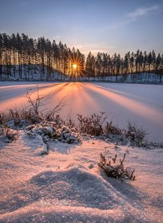Slike prirode-Images of nature Photo~love The World in Photos Winter Sunset, Winter Love, Winter Scenery, Winter Snow, Winter Pictures, Nature Pictures, Landscape Photography, Nature Photography, Beautiful Places
