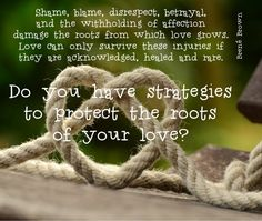 "quote by Brene Brown: ""Shame, blame, disrespect, betrayal, and the withholding of affection damage the roots from which love grows. Love can only survive these injuries if they are acknowledged, healed and rare."" With follow up question: Do you have strategies to protect the roots of your love"