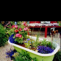 14 Best Bath Tub Garden images