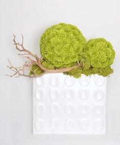 """Green Pom Pom Spheres, Sandblasted Manzanita and Chartruese Reindeer Moss in Patterened White Ceramic Rectangular Container 18""""H x 18""""W x 13""""D - FL1441 from LDF Silk"""