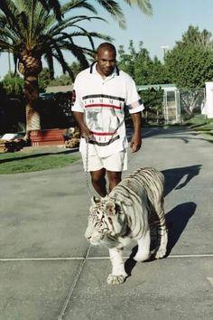 PsBattle: Mike Tyson walking his pet tiger. Rap Wallpaper Iphone, Boxe Mma, Boxing Images, White Bengal Tiger, Eleven Paris, Pet Tiger, Exotic Pets, Exotic Animals, Unusual Pets