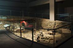 Dinosaur EXPO  - 2007 Goseong-gun Gyeongnam Korea