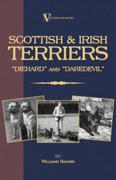 "Scottish Terriers And Irish Terriers - ""Scottie Diehard"" and ""Irish Daredevil"" (A Vintage Dog Books Breed Classic) by Williams Haynes. $8.00. 168 pages. Publisher: Vintage Dog Books (December 20, 2012)"