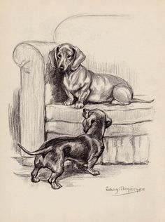 Vintage Dog Print Beautiful Dachshund Art Black and White Gallery Wall Art Kids Room and Nursery Decor Dog Lover Gift 3620 Basset Dachshund, Vintage Dachshund, Dachshund Funny, Arte Dachshund, Vintage Dog, Dachshund Love, Daschund, Dog Lover Gifts, Dog Gifts