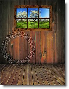 Apple Blossom Window Peel Stick Wall Mural Accent Wall Murals