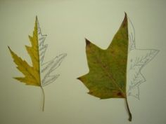 Week 2: Mirror Image - DRAW SECOND HALF OF LEAF (Art tie in to science)