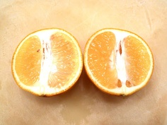 slow down and savor - a food blog: Meyer Lemons: Third time's the charm!
