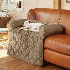 This ingenious bolstered couch protector doubles as a soft, indulgent bed for your dog. #DogBeds