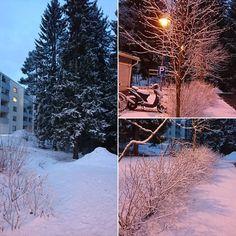 Ja illalla kotona Kuopiossa... #lumimaassa