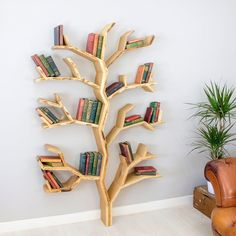 Elm Tree Bookshelf by Dan Lee @p_roduct