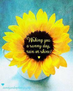 Wishing you a sunny day, rain or shine!