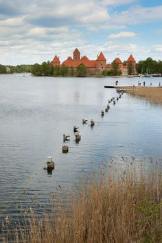 https://flic.kr/p/nuoCuA | Baltic Trip of Raccoon Pedro | Lithuania | Trakai Island Castle | Baltic Trip 2014. Photo by World Wide Gifts (www.world-wide-gifts.com). See more about Raccoon Pedro's travelling at instagram.com/worldwide_souvenirs/