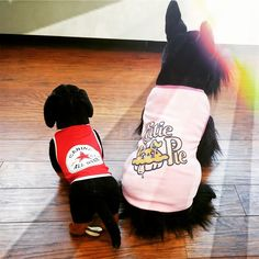 The Canine All Star and Cutie Pie tank tops are great for a spring day! All of our products are made in Canada. Check out our website: www.yellowhydrant.com