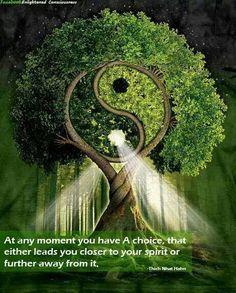 4b09bcc8ec88 Yin-Yang Tree by Michael McGloin. Yin-Yang the balance of life.