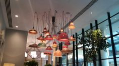 Lamps hanging down