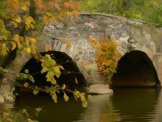 Autumn Bridge - Photograph at BetterPhoto.com