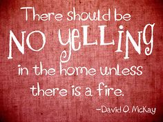 I wish there was no yelling in my house!