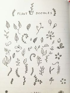 Plant doodles for gift lettering - handwriting. andreea nicoleta · diary ideas for teens My Journal, Bullet Journal Inspiration, Journal Pages, Bullet Journal Doodles Ideas, Journal Fonts, Garden Journal, Journal Ideas, Journaling, Doodle Drawing