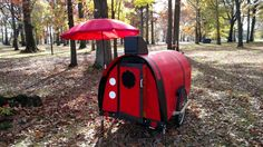 Derrick's Bicycle camper - Creative Ideas | Elkins DIY