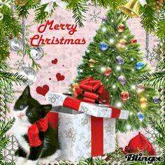 Merry Christmas Christmas Animals, Christmas Cats, All Things Christmas, Winter Christmas, Christmas Themes, Xmas, Merry Christmas Pictures, Beautiful Gif, Halloween