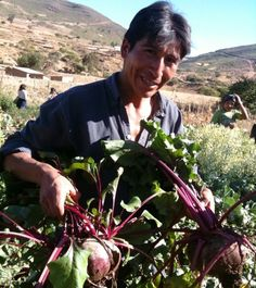 Farmer in Omereque showing the beets he was able to grow with water from Mano a Mano water projects; we built many community projects in Omereque, including a road, school, clinic, and 148 small water ponds.