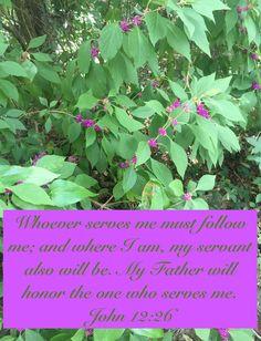 """My Strength: John 12:26 - """"I Will Follow"""""""