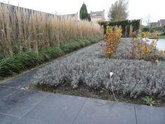 Deze strakke tuin is het hele jaar mooi. (aangelegd door Roel Guchelaar)