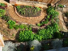 Models of Distributed Urban Agriculture | Civil Eats