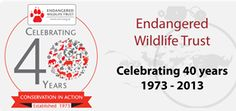 The Endangered Wildlife Trust (EWT) is dedicated to conserving threatened species and ecosystems in southern Africa to the benefit of all people.
