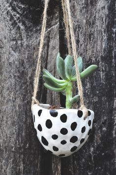 Black and White Dot Hand Painted Ceramic Hanging Planter //  Glazed Clay Succulent Planter // Decorative + Functional White Clay Planter on Etsy, $34.00