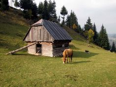 , Homeland, Hungary, Paradise, Cabin, House Styles, Home Decor, Homemade Home Decor, Cabins, Cottage