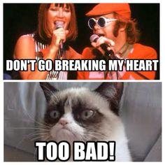 Grumpy cat and Elton John