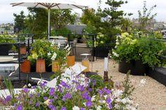 Une terrasse fleurie et spacieuse.