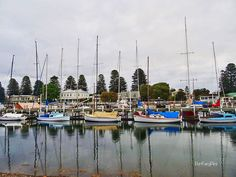 #PortFairyPics #portfairy #australia #aussiephotos #australiagram #amazing_australia #boat #exploreaustralia #fishing #fish #greatoceanroad #great_captures_australia #icu_aussies #igs_oceania #ig_australia #loves_oceania #liveinvictoria #seeaustralia #travel #visitvictoria #wow_australia #wharf #jetty #yacht by portfairypics