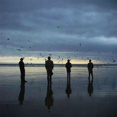 "Photographed on Porthcawl Beach in South Wales, and ably assisted by the ""Fabulous Ricardo's"" plus a lot of dead fish."