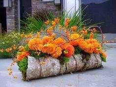 Флористическая композиция.