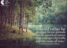 Outdoor Quotes 673 Best Outdoor Quotes & Words images   Rv travel, Tent camping  Outdoor Quotes