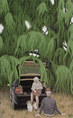 View Willow by David Alexander Colville on artnet. Browse upcoming and past auction lots by David Alexander Colville. Original Paintings For Sale, Art Paintings For Sale, Canadian Painters, Canadian Artists, Alex Colville, Art Folder, Magic Realism, Acrylic Wall Art, Unusual Art
