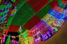 Need a reason to visit Walt Disney World for Christmas? How about FIVE MILLION REASONS--one for each of the Osborne Lights! If you need 5,000,014 or so reasons, read this article on Christmas at Walt Disney World!