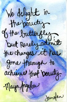 We delight in the beauty of the butterfly but rarely admit the changes it has gone through to achieve that beauty. - Maya Angelou