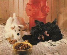 X537 Sewing PATTERN ONLY 2 Terrier Stuffed Toy by BeadedBundles, $7.95