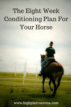 The Eight Week Plan to Condition Your Horse - Pferd Horse Riding Tips, Horse Tips, Trail Riding, Riding Gear, Ranch Riding, Riding Clothes, Week Planer, Horse Information, Westerns