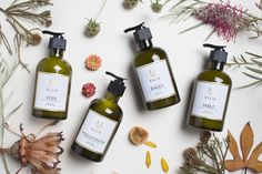 Penning Perfumes: New York Times Beauty Columnist Names Luxury Fragrances After Literary Pieces... Literature lovers rejoice. There's a luxury fragrance line dedicated to poems and literary works.