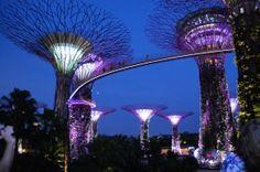 Garden by the Bay at Marina Bay, Singapore