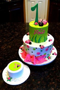 Ladybug first birthday the pink and green is super cute to
