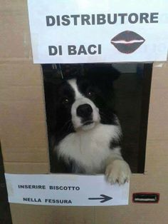 Distributore di #baci... ^_^ #LOL