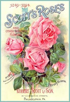 Free vintage images, clip art to use in craft projects, collage, art journals, scrapbooks or any way you wish Posters Vintage, Vintage Labels, Vintage Ephemera, Vintage Cards, Vintage Paper, Vintage Postcards, Vintage Prints, Decoupage Vintage, Vintage Pictures